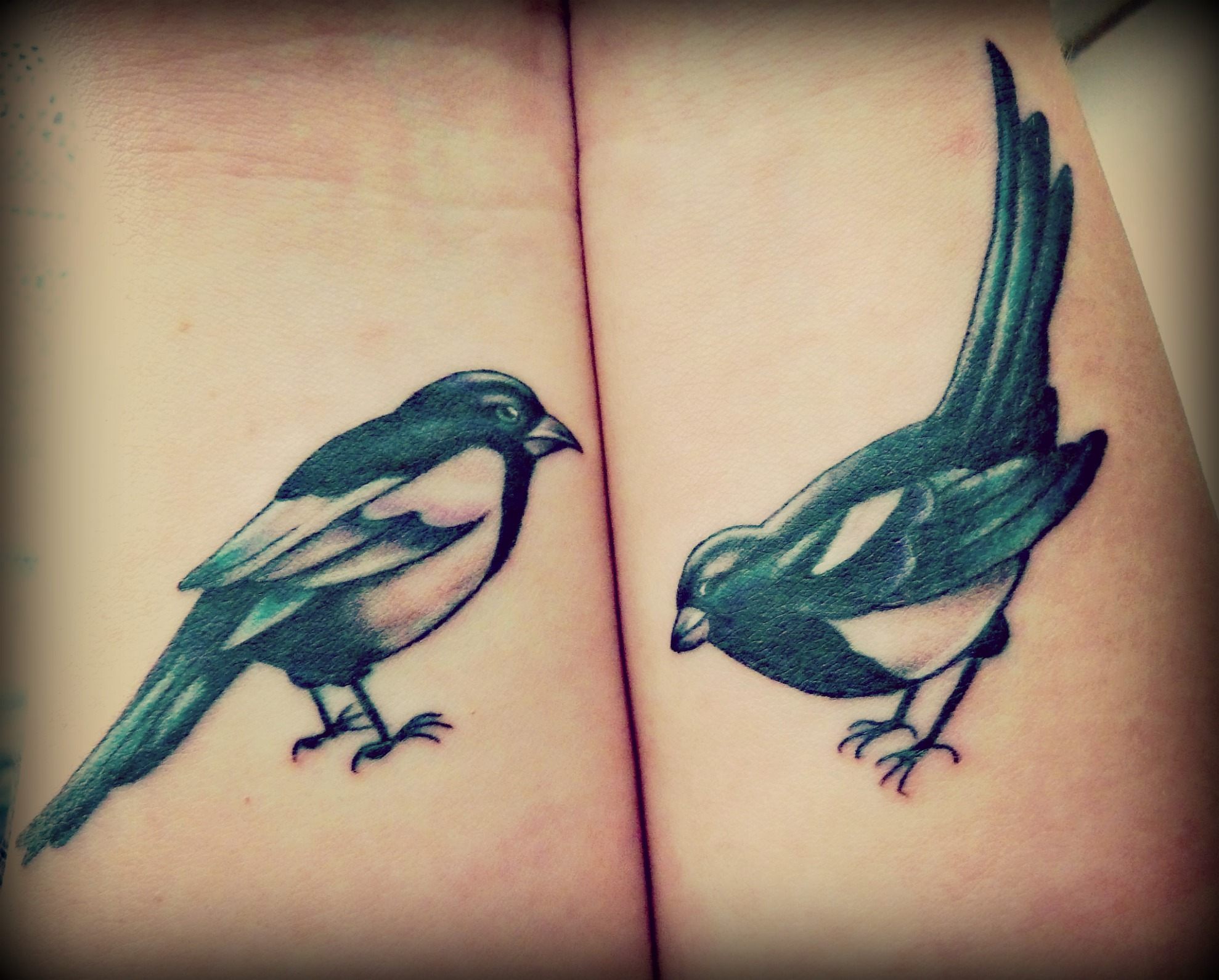 Traditional magpie tattoo - photo#28