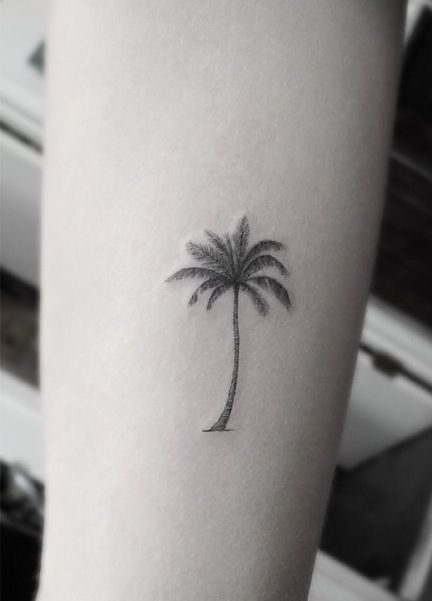 Palm Tree Tattoos Black And White Palm Tree Tattoo